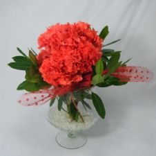 Red preserved hydrangea in a vase / Φυσική κερωμένη ορτανσία σε βάζο